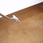 Eastern Idaho Carpet Cleaning